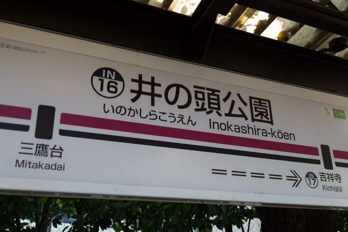 2014_08_31_IMG_7630