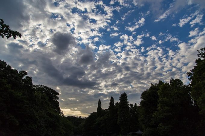 2014_08_31_IMG_7644