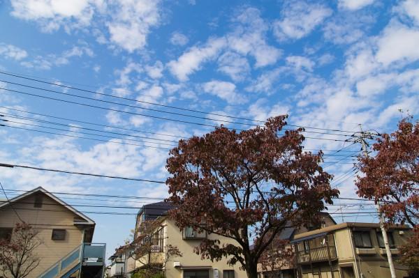 2014_10_26_IMG_8323