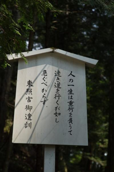 2015_08_02_IMG_9999_100