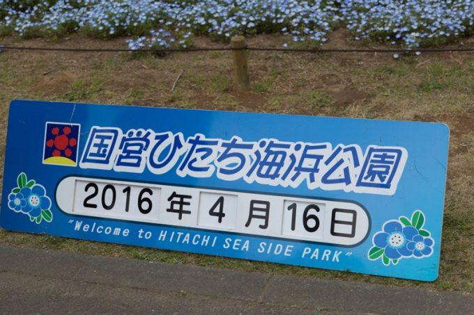 2016_04_16_3978
