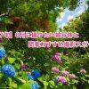 【2017年】6月に撮りたい被写体と関東おすすめ撮影スポット!
